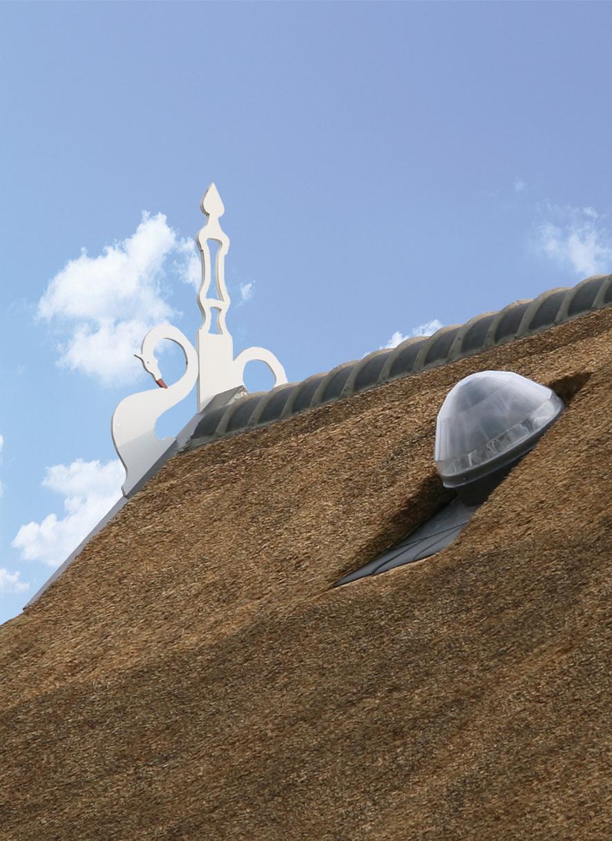 Solatube_160-290DS_rieten dak_Loden dakdoorvoer-40cm hoog